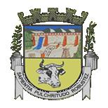 Brasão da Câmara Municipal de Wenceslau Braz - MG
